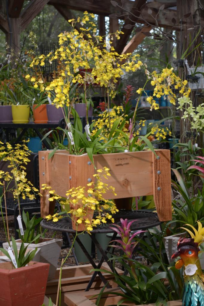 Garden_Shop_083