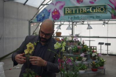 Floral Design Tips for Orchid Displays