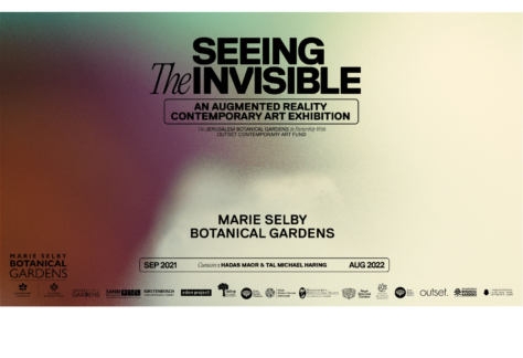 Seeing the Invisible Square Logo
