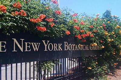 NYBG-entrance