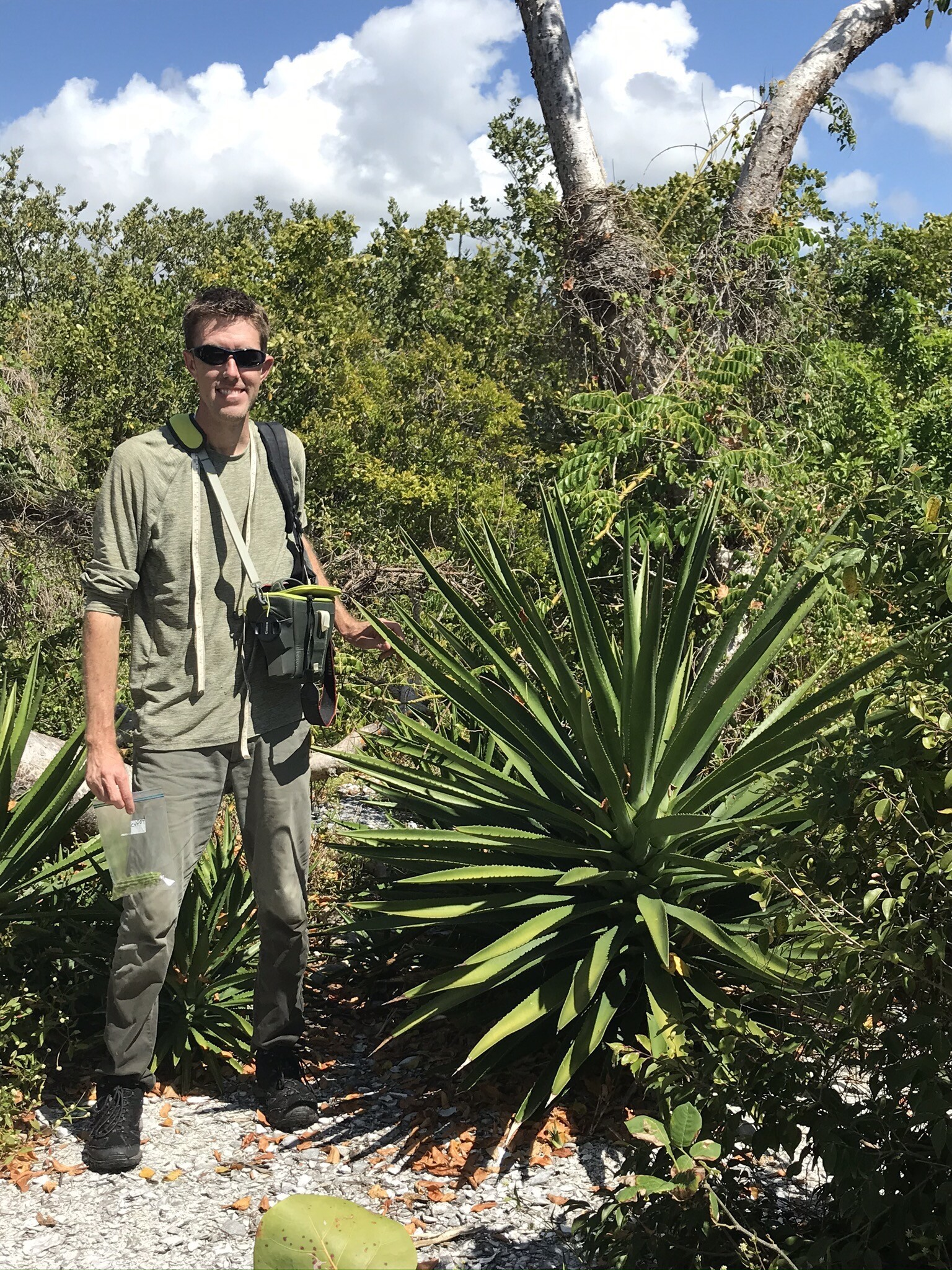 Science Saturday: Scenes from Botany's field work in southwest Florida
