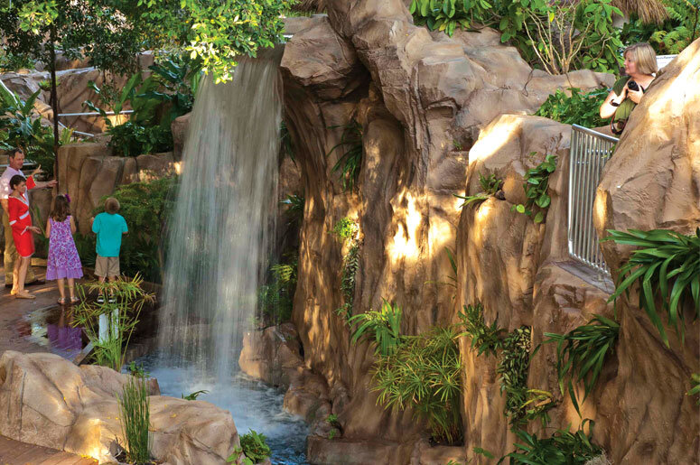 http://selby.org/wp-content/uploads/Rainforest-garden-waterfall.jpg