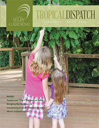 https://selby.org/wp-content/uploads/Tropical-Dispatch-January2014.jpg