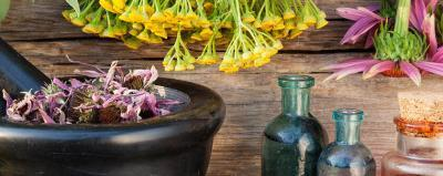 Unlocking the Mysteries of Plant Essences – Aromatherapy<h2 class='secondary-title'>Psychology of Scent: Smell – the First Frontier; Pathology of Scent Explorations; and Molecules of Emotions</h2>