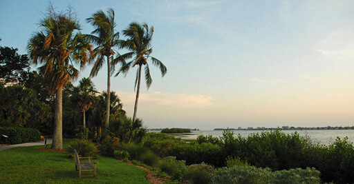 Plan Your Visit To Selby Gardens