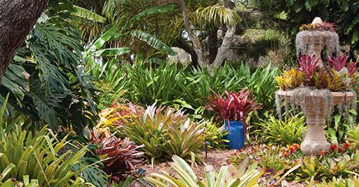 Etonnant Gardens Highlights