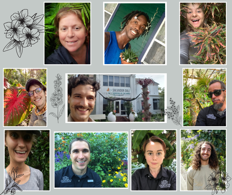 Faces of Selby Garden Horticulture Team