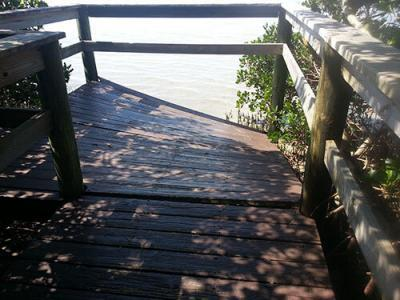 mangrove-boardwalk-damage